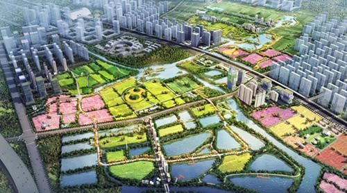 """打造大湾区""""城市绿肺"""" 碧桂园农业将建设农业公园综合体"""